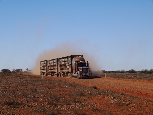 Expect some rare road trains along the track, but you should see, hear and smell them coming, then you should wait a bit for the dust to settle