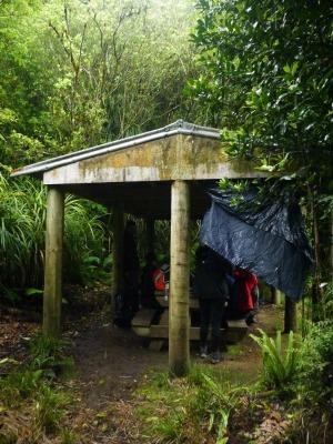 Mangakino Shelter